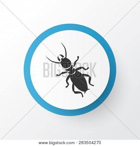 Thermit Icon Symbol. Premium Quality Isolated Termite Element In Trendy Style.