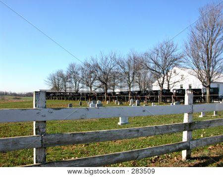Amish Church/cemetery