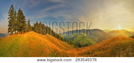 Highland At Sunset. Panoramic View Of Conifer Foirest In Autumn Highland.