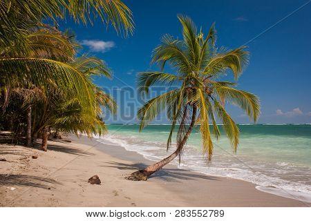 Costarican Paradise Of Cahuita National Park On East Coast