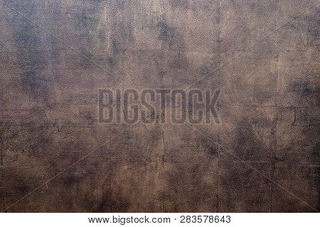 Bison Skin. Texture Of Bison Leather. Skin Texture. Bison Leather, Bronze Color, Brown Color. The Te
