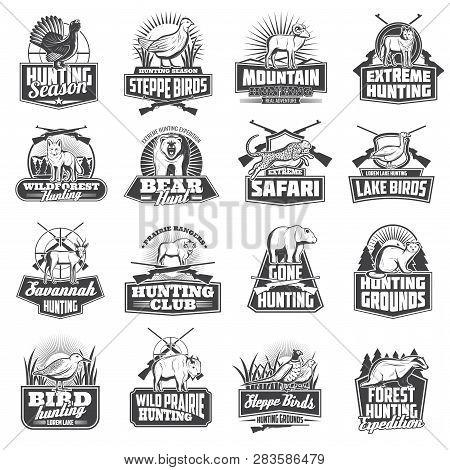 Hunting Sport Animal Trophy, Hunter Ammo Or Hunt Equipment. Vector Hunting Club Badges African Safar