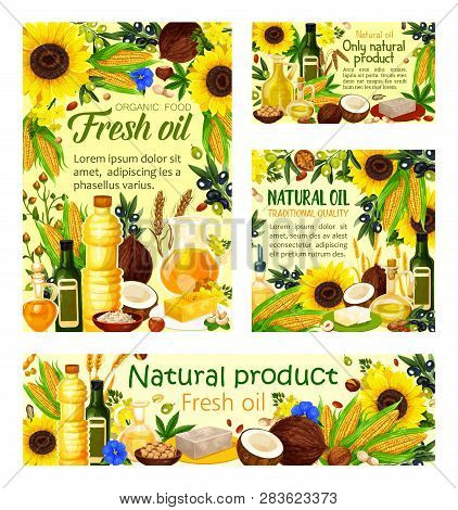 Natural Cooking Oils Products Posters And Banners. Vector Oil Bottles And Jars Of Sunflower, Olive O