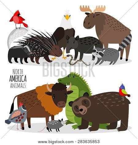 Popular North America Animals Groups Vector Illustration. Bear And Bison, Porcupine And Alligator, D