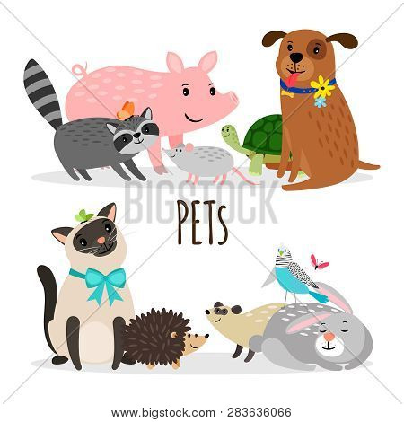 Cartoon Character Groups Of Vector Pets Isolated On White Background. Illustration Of Pets Animal, K