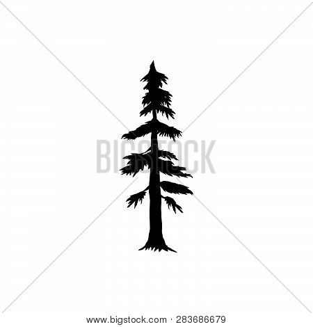 Detailed Vectoral Trees Silhouette.vector Illustration Isolated On White Background. Pine, African,