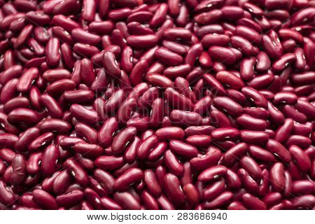 Kidney Beans - Dark Red Useful Beans, Background. Leguminous