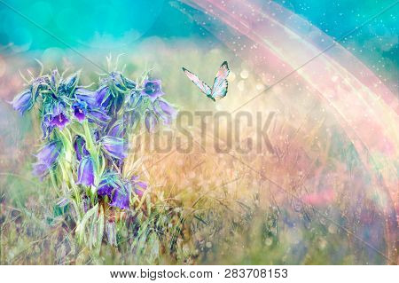 Beautiful Blue Flowers Bell And Butterfly In Spring Nature Outdoors Against Blue Sky, Macro, Soft Fo