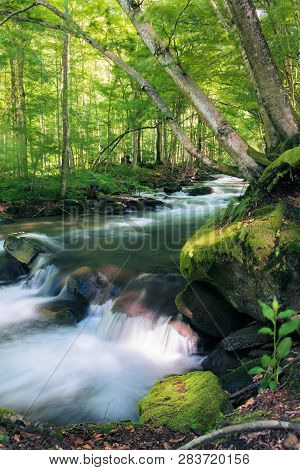 Powerful Wild Stream In Forest. Beautiful Summer Nature Scenery. Mossy Rocks. Long Exposure