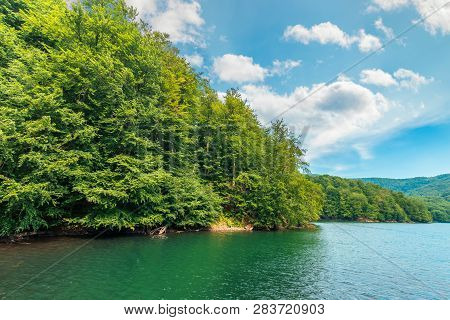 Scenic View Of Beech Forest On Lake Shore. Sunny Afternoon Summer Weather With Fluffy Clouds On The