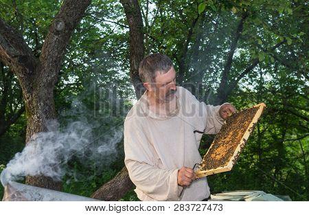 Outdoor Portrait Of Ukrainian Peasant Hard Working In Own Bee Yard