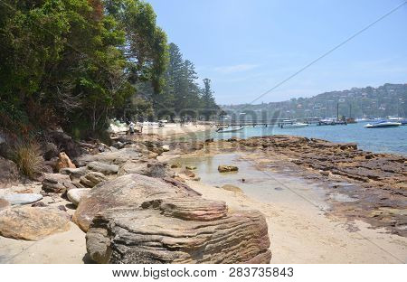 Forty Baskets Beach Is A Small Quiet Beach On Manly Cove, Perfect For Picnics And On The Spit To Man