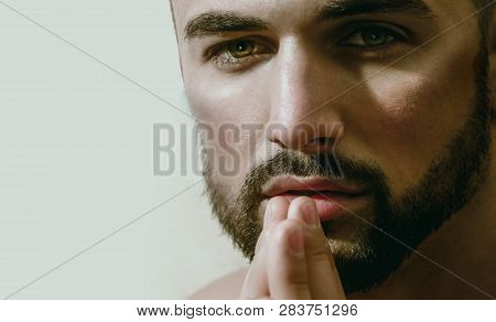Sexy Bearded Man Looks At Camera. Ask For Help, Trust And Eyes. Portrait Of Young Handsome Guy With