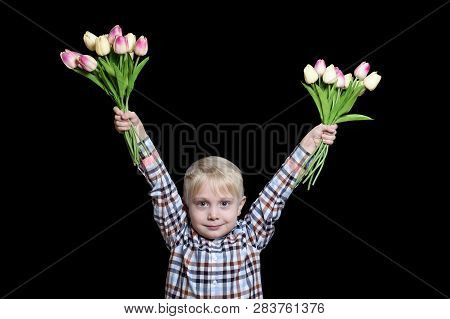Small Blond Boy Holding Two Bouquets Of Tulips. Portrait. Isolate On Black Background