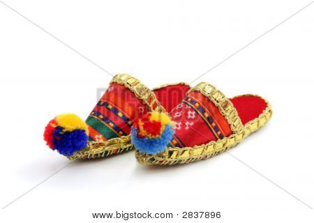 Wizard Slippers