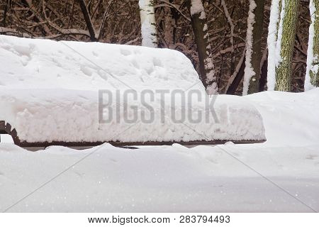 Bench Under The Snow And Trees In A Park