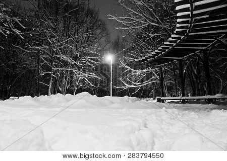 Street Lamp, Snowdrifts And Trees Under Snow Black And White