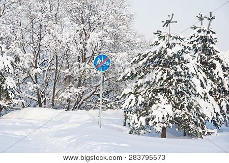 Spruce And Road Sign Under The Snow On Winter Day