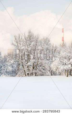 Factory Pipes And Trees In The Snow In Winter