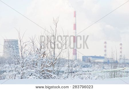 Factory And Trees In Snow In Winter
