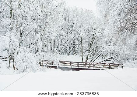 Trees Under Snow And Bridge In Winter