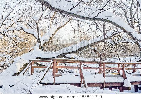 Wooden Bridge In City Park On A Winter Day