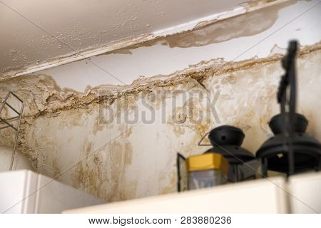 Mold In The Corner. Rain Water Leaks  On White Wet Wall
