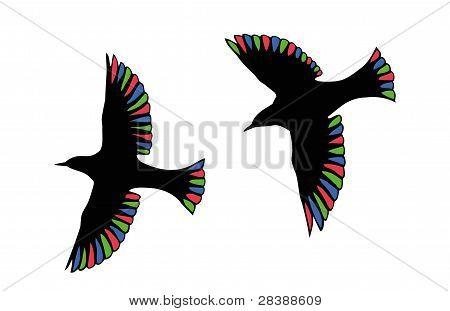 RGB fåglar