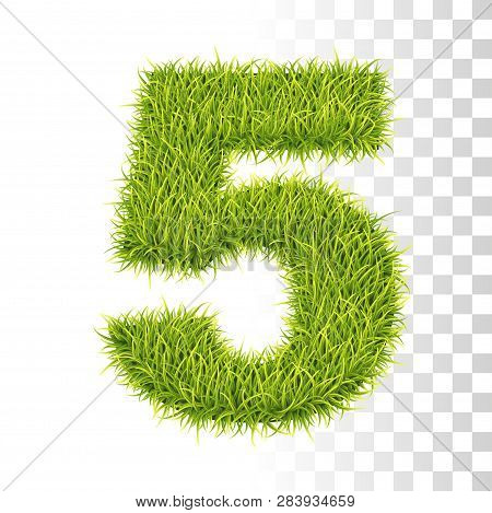 5. Vector Number Five Illustration. Fresh Green Grass Realistic Texture