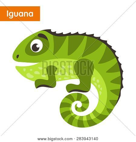 Green Iguana. Cartoon Character On A White Background. Vector Illustration.
