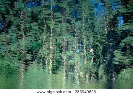 Abstract Background: Reflection Of The Forest In The Water. Green Pine Trees Reflecting In A Pond