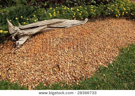shade of pebble garden with dry tree