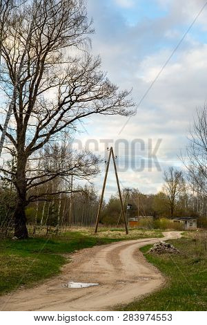 Summer Landscape With Empty Rural Road, Tree And Blue Sky.  Classic Rural Landscape In Latvia.