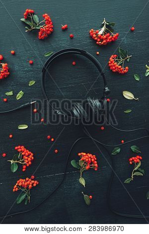 Flat lay audio headphones on dark wooden background with floral arrangement, top view nostalgic retro toned image poster