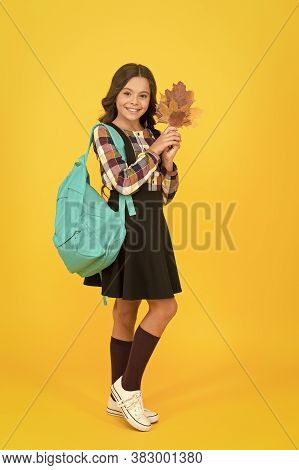 Shaping Little Minds In School. Happy Little Girl Enjoy Autumn. Little Child Hold Yellow Leaves. Cut