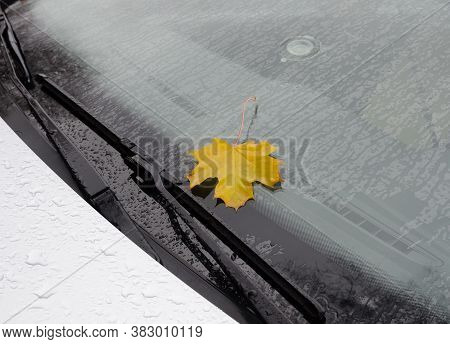 Autumn Leaf On Car Windshield Wet From Rain. Yellow Maple Leaf On Vehicle Window During Fall Storm O