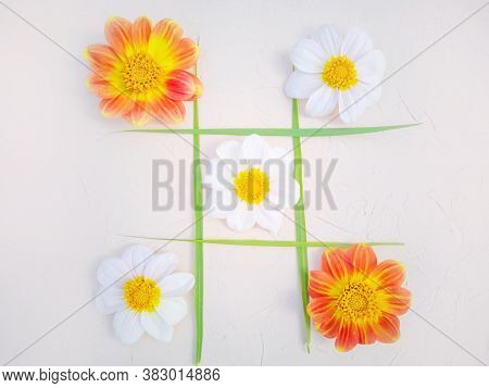 Tic-tac-toe Of Flowers And Blades Of Grass. Creative Concept Of A Holiday, Birthday. White And Orang