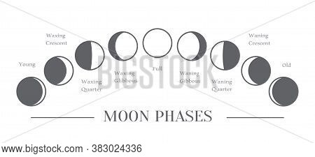 Moon Phases. The Whole Cycle From New Moon To Full Moon. Vector