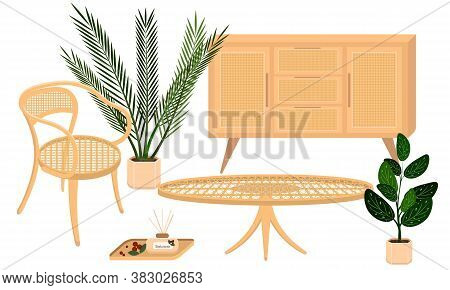 Vector Set Of Country Rattan Furniture With Plants Contains A Chair, A Coffee Table, A Cupboard And