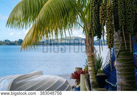 Tauranga New Zealand - August 22 2020; Tropical Garden Frames View Over White Clinker Dinghy To Bay