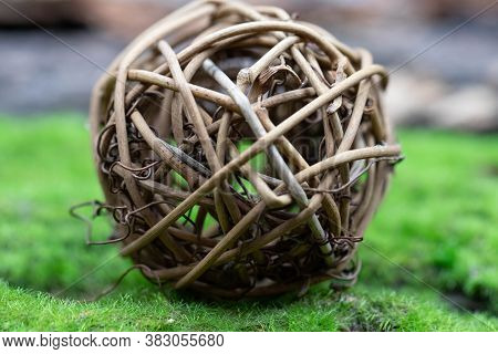 A Ball Of Rattan, Intertwined Branches Lies On The Green Grass. Close-up.