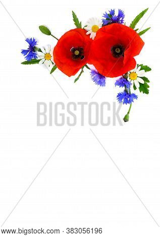 Red Poppies, Cornflowers And Chamomile On White Background With Space For Text. Flat Lay, Top View