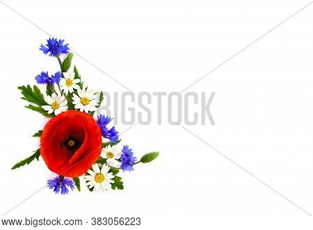 Red Poppy, Cornflowers And Chamomile On White Background With Space For Text. Flat Lay, Top View