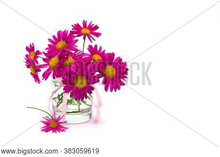 Bouquet Of Pink Chamomile (pyrethrum, Tanacetum Coccineum) In Small Vase On White Background With Sp
