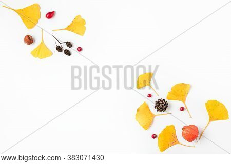 Autumn Composition. Yellow Fall Leaves Of Gingko Biloba With Physalis Flower, Berries And Cones Isol