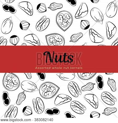 Assorted nuts Vector template for packing paper Sketch seamless pattern with walnuts, peanuts, brazil nuts, pecan, and hazelnuts on white backdrop with red copy space