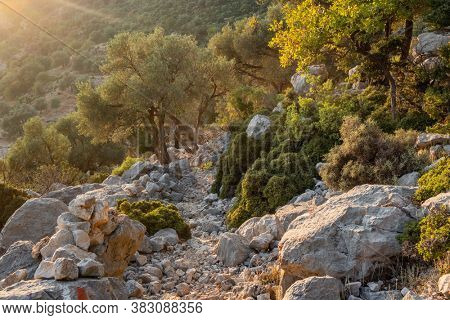 Walking the Lycian way hiking trail in Antalya region. Hiking trail in mountains at sunset in Turkey