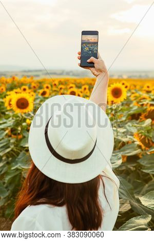 Stylish Elegance Woman Taking Picture Of The Sunflowers Field On Her Phone