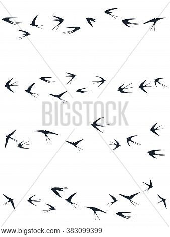 Flying Swallow Birds Silhouettes Vector Illustration. Nomadic Martlets Flock Isolated On White. Soar