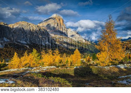 Stunning Autumn Alpine Landscape With Colorful Redwood Forest And Beautiful Yellow Larches. Amazing
